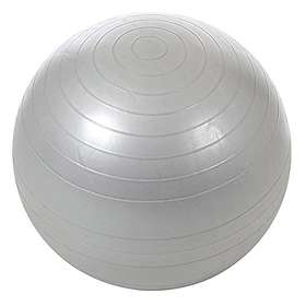 Find the best deals on exercise balls compare prices on pricespy nz