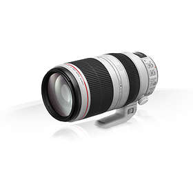 Canon EF 100-400/4.5-5.6 L IS USM